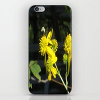 Pollen for my Queen iPhone & iPod Skin