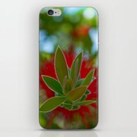 Blossoming iPhone & iPod Skin