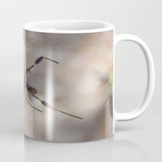 Spider 1 | Picture A Mug