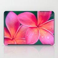 Aloha Hawaii Kalama O Ne… iPad Case