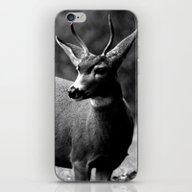 Young Buck iPhone & iPod Skin
