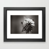 Ready To Bloom Framed Art Print