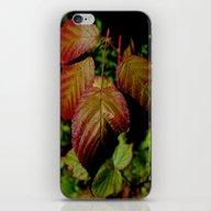 iPhone & iPod Skin featuring Autumn Splendor by Kathleen Sartoris