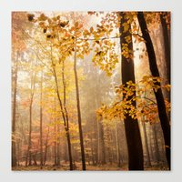 through the woods square Canvas Print