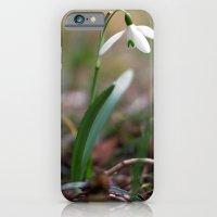 Snowdrop -  Spring Flower Nature Macro Photography iPhone 6 Slim Case