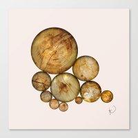 Wood Wood 1 Canvas Print