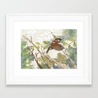 Flying Away Framed Art Print
