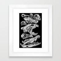 Carnivores Framed Art Print