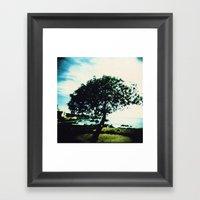 Lonely Tree Framed Art Print