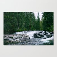 The River is Wild Canvas Print