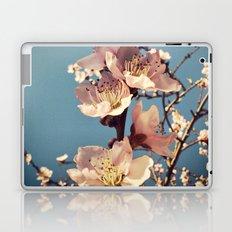 fulgor Laptop & iPad Skin