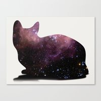 Willow The Galaxy Cat! Canvas Print