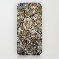 When I Look Up iPhone 6 Slim Case