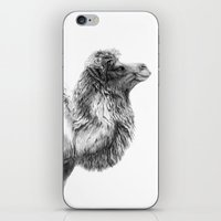 Bactrian Camel G079 iPhone & iPod Skin