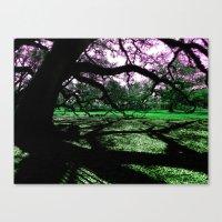 Green Oak Shadows Canvas Print