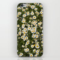 Sea daisies at the mountains iPhone & iPod Skin