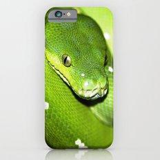 Green Python Portrait 3 Slim Case iPhone 6s