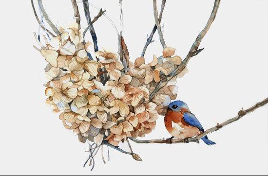 Winter Bird Art Print