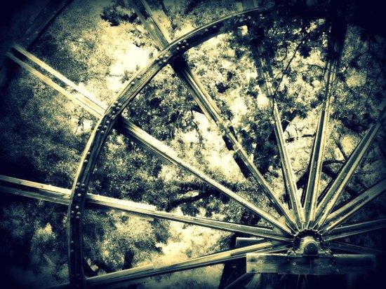 tailing wheels I Art Print