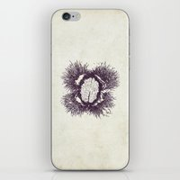 Chestnutbrain iPhone & iPod Skin