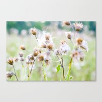 Pastel Greens Canvas Print