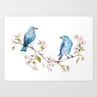 Mountain Bluebirds on Sakura Branch Art Print