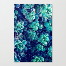 Plants Of Blue And Green Canvas Print