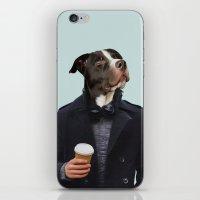 Polaroid N°17 iPhone & iPod Skin