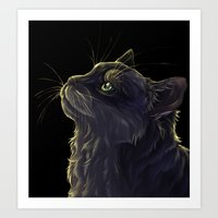 Cat and the light  Art Print