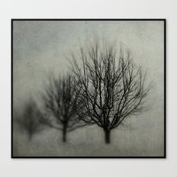 Winter's Solitude Canvas Print