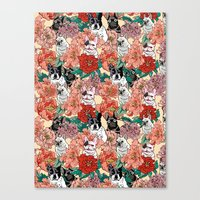French Bullbloom Canvas Print