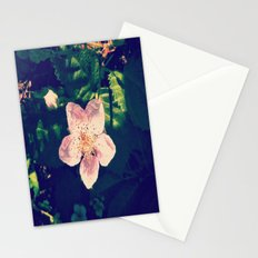 Blackberry Flower Stationery Cards