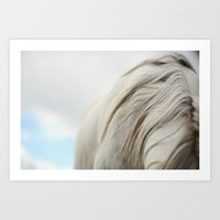 The White Mare Art Print