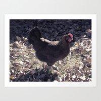 Welsummer in Autumn  Art Print