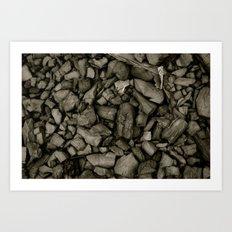 Coal Art Print
