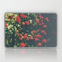 Summer Roses Series  - I -   Laptop & iPad Skin