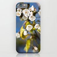 iPhone & iPod Case featuring Spring is Near by Junkyard Doll