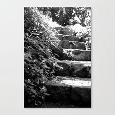 A Step Up Canvas Print