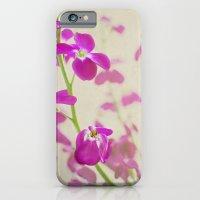 Evening Stock iPhone 6 Slim Case