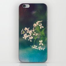 And we spent the hours with submarine flowers iPhone & iPod Skin