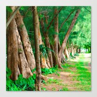 #TROPICAL PARC - MIAMI USA Canvas Print