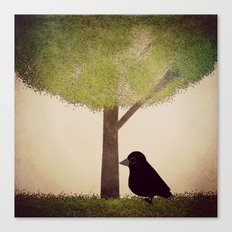 Crow-884 Canvas Print