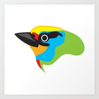 Black-browed Barbet Art Print