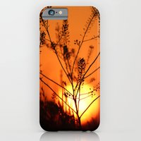 Goodnight Sun iPhone 6 Slim Case