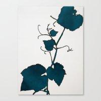 Teal Grape Leaves Canvas Print
