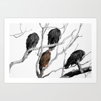 Turkey Vultures Art Print