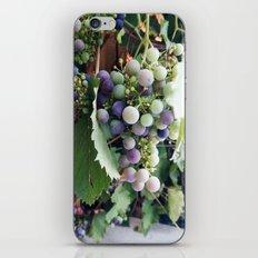 grape iPhone & iPod Skin