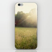 Morning In Cades Cove iPhone & iPod Skin