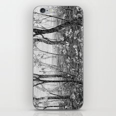Misty Forest iPhone & iPod Skin