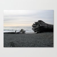 Logs on La Push Beach Canvas Print